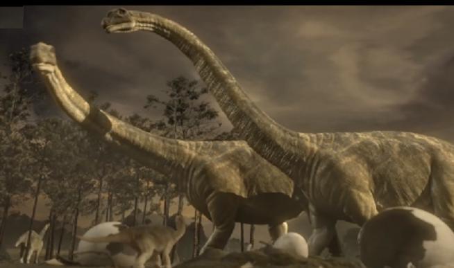 Цікаві факти про динозаврів