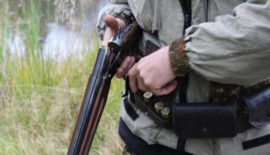 Цікаві факти про полювання