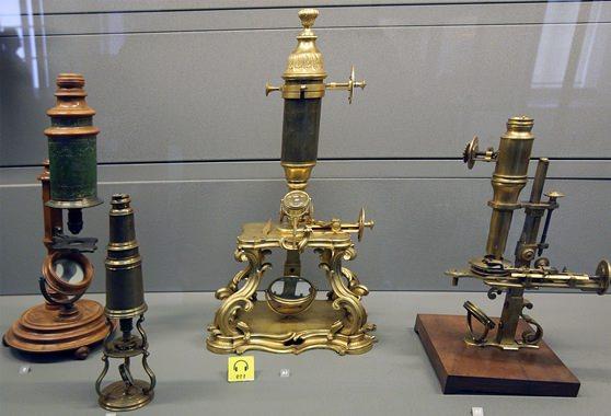 Цікаві факти про мікроскоп