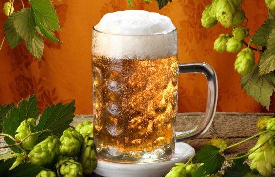 Цікаві факти про пиво