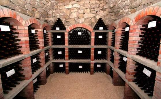 Цікаві факти про вино