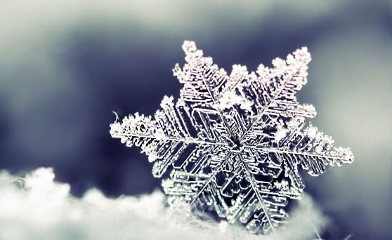 Цікаві факти про сніг