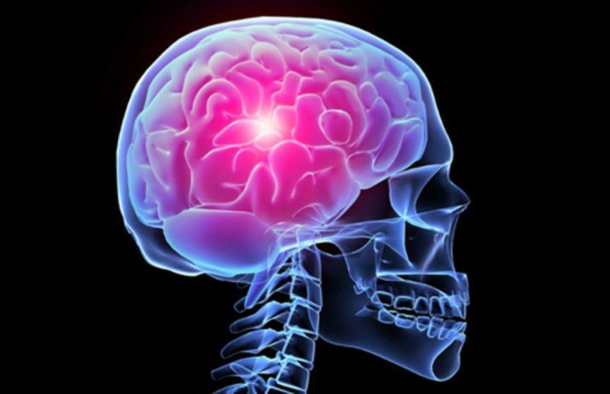 Цікаві факти про мозок людини