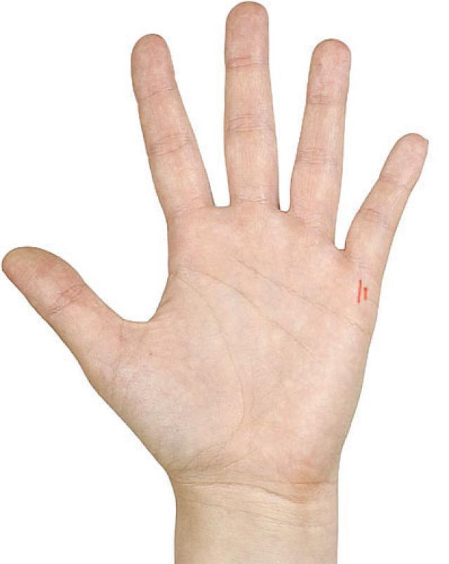 Лінія дітей на руці