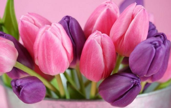 Короткі привітання з 8 березня для всіх