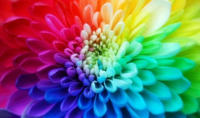 Цікаві факти про кольори
