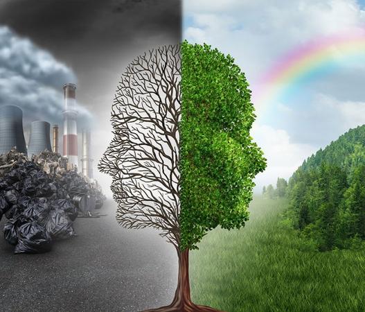 12 цікавих фактів про екологію