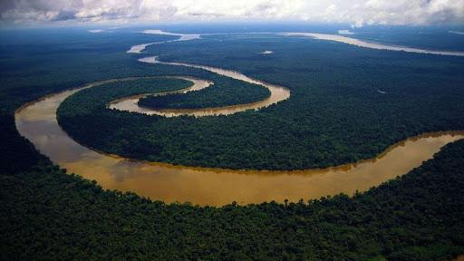 Цікаві факти про Амазонку