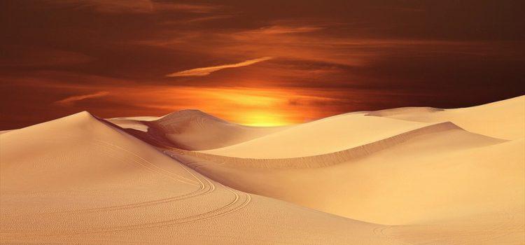 Цікаві факти про пустелі