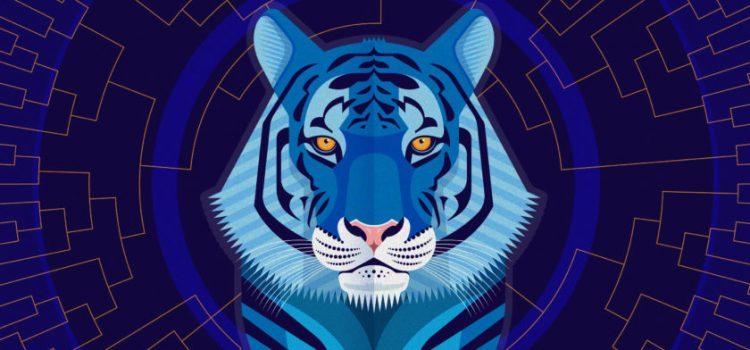 Як зустрічати Новий Рік Блакитного Тигра?