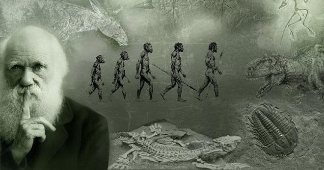 Цікаві факти про Дарвіна